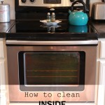 how to clean INSIDE your oven door